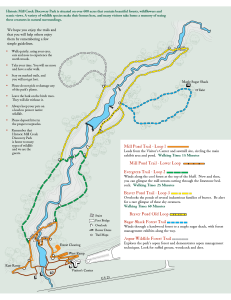 Historic Mill Creek Discovery Park Trail Map