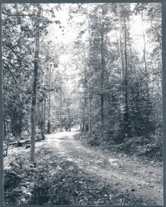 Goodale hired contractors to build Leslie Avenue through the park in 1889. The road was named for former Fort Mackinac commander Leslie Smith.